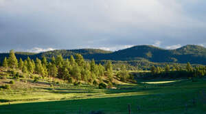Featured Property in Chama, NM 87520