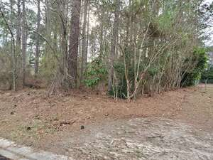 Land for Sale, ListingId:63133182, location: WIREGRASS CIRCLE Moultrie 31768