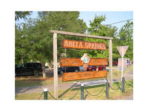 Featured Property in Abita Springs, LA 70420