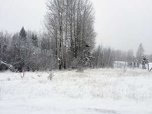 Featured Property in County of Grande Prairie No 1, AB T8W 5K1