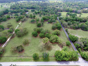 Featured Property in Ocala, FL 34476