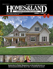 HOMES & LAND Magazine Cover. Vol. 20, Issue 13, Page 1.