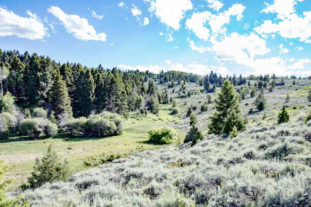 Land for Sale at Parcel A Axolotl Lakes Ranch Ennis, Montana 59729 United States