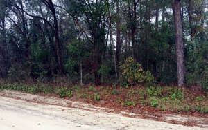 Land for Sale, ListingId:37286686, location: NW WILTON WAY Lake City 32024