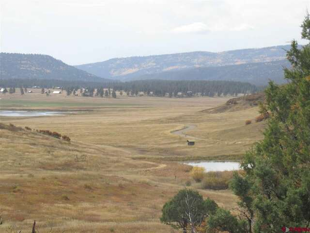 land for sale x roush drive pagosa springs co homes