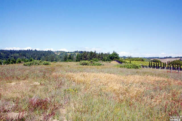 Single Family for Sale at 15200 Bodega Highway Occidental, California 95465 United States