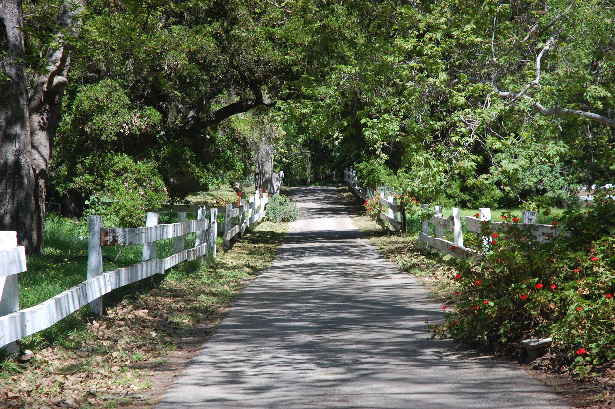 Single Family for Sale at 7804 Stanley Park Rd Carpinteria, California 93013 United States