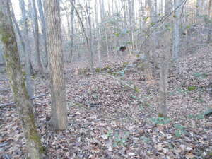 Land for Sale, ListingId:42637067, location: TBD Paschall Road Boydton 23917