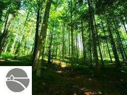 Land for Sale, ListingId:51048948, location: 10106 Summit City Road Traverse City 49684