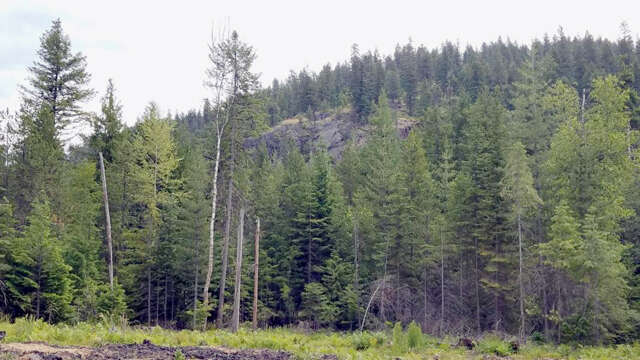 Investment for Sale at 196 Lower Muskrat Spur Sagle, Idaho 83860 United States