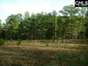 Land for Sale, ListingId:51294711, location: 0 CLEMSON Road Columbia 29229