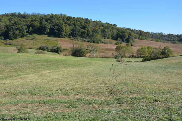 Home Listing at 0 Bloody Run HACKERS CRK Run, JANE LEW, WV