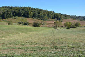 Featured Property in Jane Lew, WV 26378