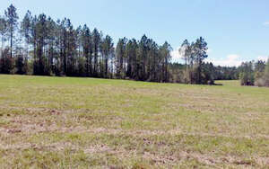 Featured Property in Wellborn, FL 32094