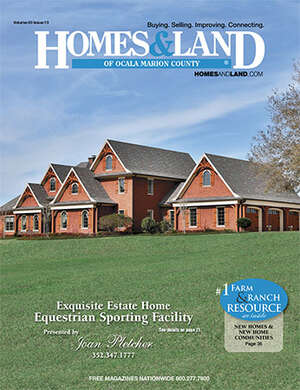 HOMES & LAND Magazine Cover. Vol. 40, Issue 13, Page 21.