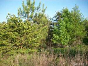 Land for Sale, ListingId:43530644, location: 71,72 Jericho Lane Lincolnton 28092