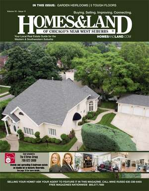 HOMES & LAND Magazine Cover. Vol. 10, Issue 11, Page 10.