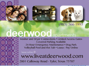 Apartment for Rent, ListingId: 1513894, Tyler, TX  75707