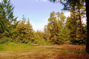 Land for Sale, ListingId:34949993, location: 0 Amber Ridge LOOP Boulder Creek 95006