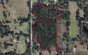 Featured Property in Reddick, FL 32686