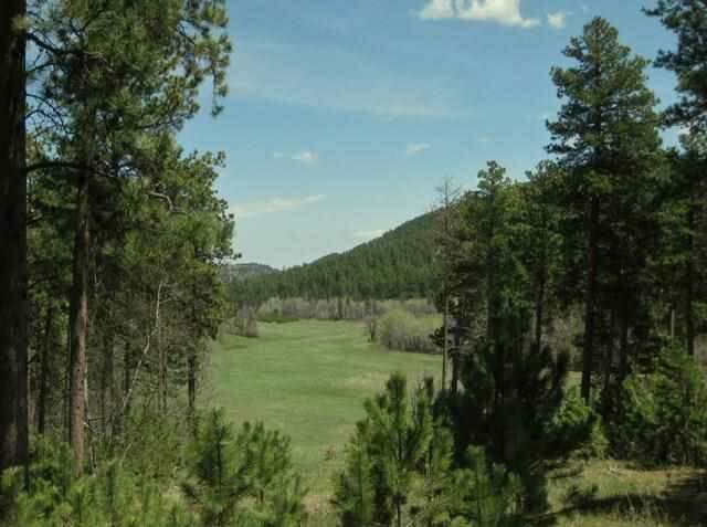Real Estate for Sale, ListingId:44346698, location: Government Lots HIGHWAY 85 Deadwood 57732