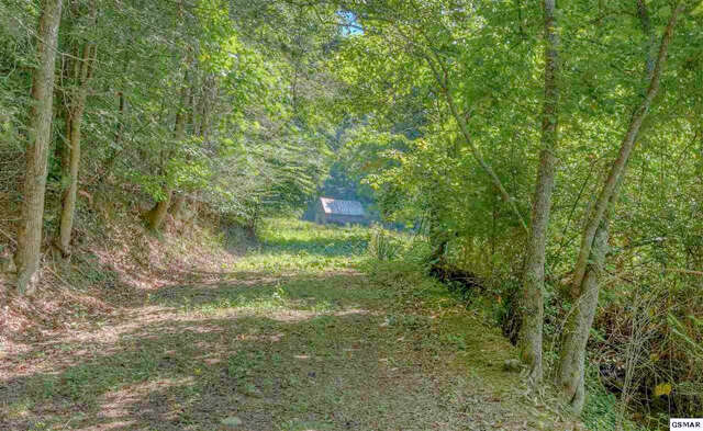 Investment for Sale at Jones Cove Road Sevierville, Tennessee 37876 United States