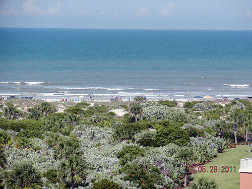 Single Family for Sale at 261802 New Smyrna Beach, Florida 32169 United States