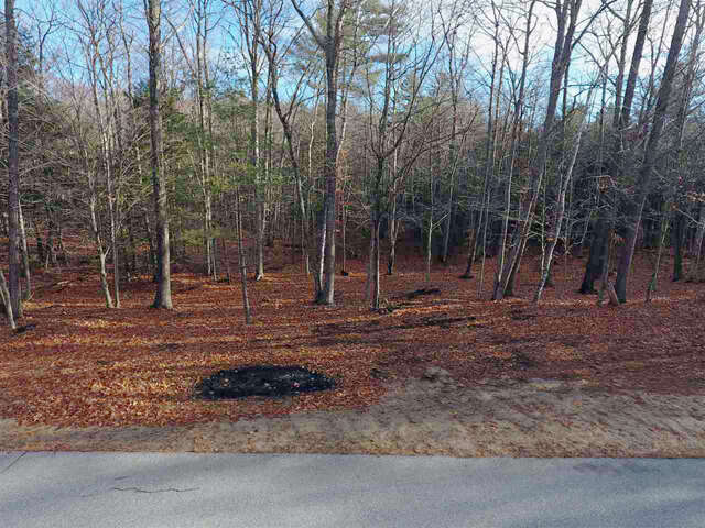 Real Estate for Sale, ListingId:41529373, location: Sargent Road lot 10 Holderness 03245