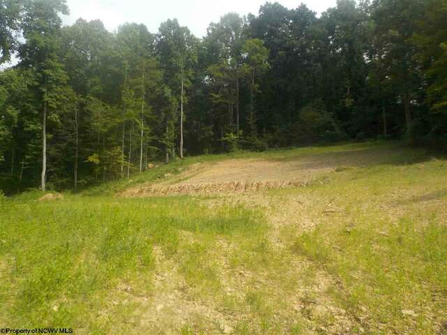 Real Estate for Sale, ListingId:46932627, location: 16.74 AC Greys Run Grant Town 26574