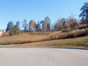 Land for Sale, ListingId:42287849, location: Strawberry Plains 37871