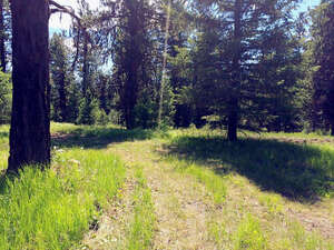 Real Estate for Sale, ListingId: 36929973, McCall, ID  83638