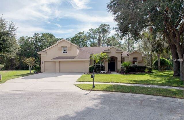 Single Family for Sale at 5151 Loquat Court Palm Harbor, Florida 34685 United States