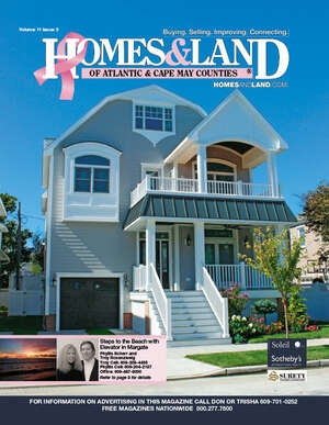 HOMES & LAND Magazine Cover. Vol. 11, Issue 03, Page 8.