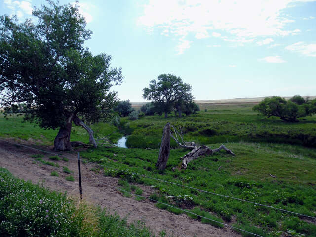 Single Family for Sale at Tea Kettle Road Torrington, Wyoming 82240 United States