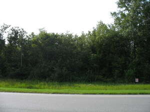 Land for Sale, ListingId:36553166, location: 1311 S Hwy 221 Tract 1 Naylor 31641