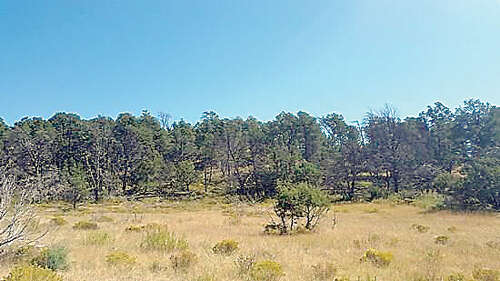 Single Family for Sale at #1 Pinon Ridge Rd Ruidoso Downs, New Mexico 88346 United States