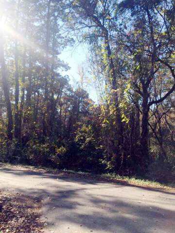 Home Listing at 0 Hayes Road, SUMMERVILLE, SC