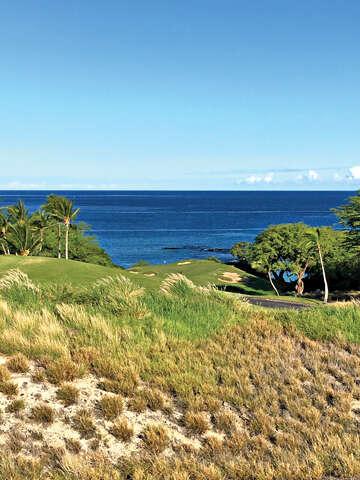 Land for Sale at 62-3745 Kaunaoa Nui Rd Kamuela, Hawaii 96743 United States