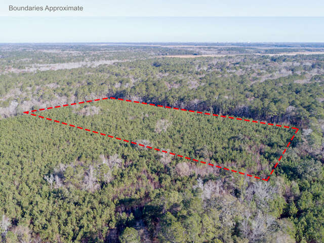Land for Sale at 0 Hut Rd Johns Island, South Carolina 29455 United States