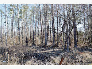 Land for Sale, ListingId:31633345, location: 142 Blossom Hill Road Lincolnton 28092