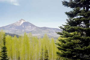 Featured Property in Clark, CO 80428