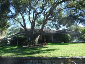 Featured Property in New Pt Richey, FL 34655