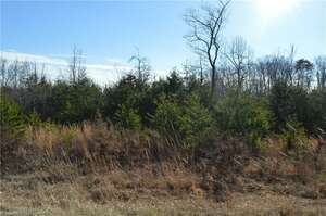 Land for Sale, ListingId:46511544, location: 00 NC Highway 700 Eden 27288
