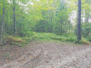 Featured Property in Newark, VT 05871