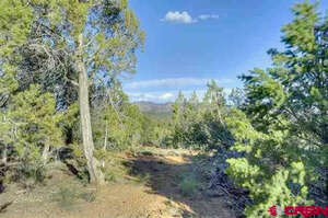 Real Estate for Sale, ListingId: 39310234, Mancos, CO  81328