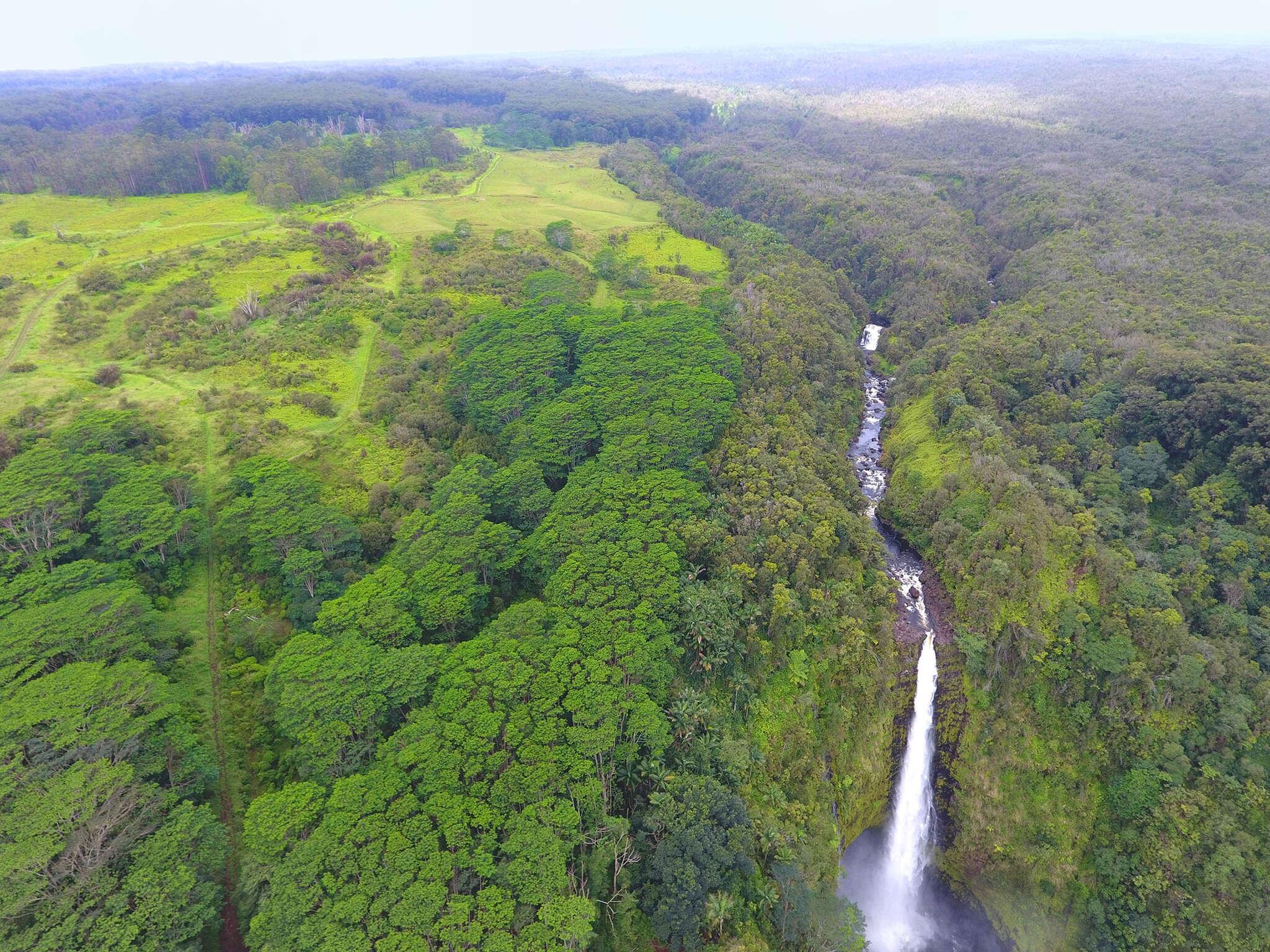 Investment for Sale at Kaupaku Ea Homestead Rd Pepeekeo, Hawaii 96783 United States