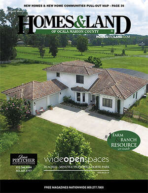 HOMES & LAND Magazine Cover. Vol. 41, Issue 10, Page 19.