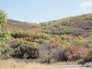 Land for Sale, ListingId:41794943, location: 29620 County Road 179 (Crawford Ranch) Steamboat Springs 80487
