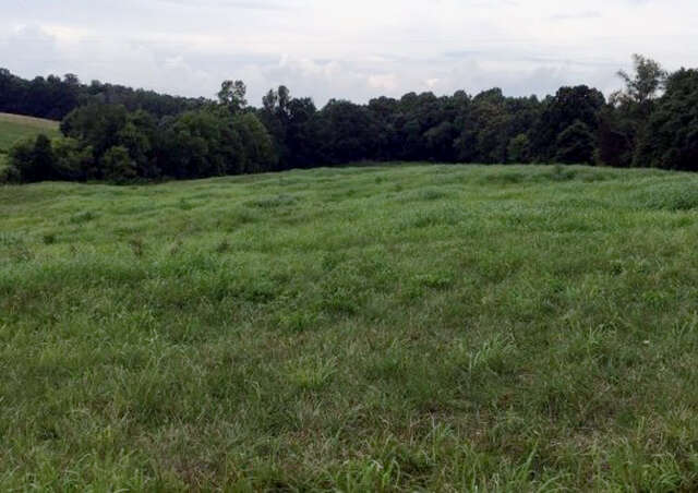 Real Estate for Sale, ListingId:41241105, location: 7.7 AC Eckles Cemetery Road Livingston 38570