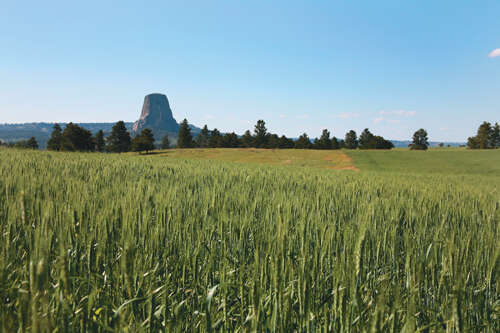 Additional photo for property listing at 406 Wy-24  Devils Tower, Wyoming 82714 United States